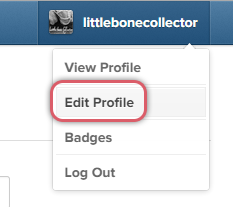 Edit Profile link on Instagram for desktop